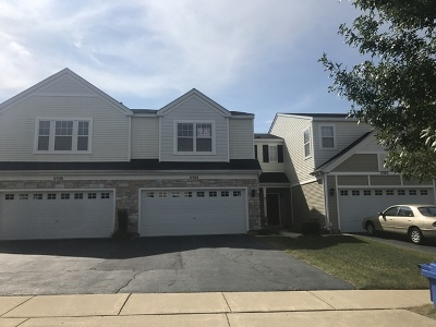Carpentersville Condo/Townhouse New: 6504 Marble Lane
