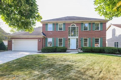 Naperville Single Family Home New: 448 Prairie Knoll Drive
