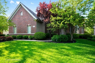 South Elgin Single Family Home For Sale: 6 Persimmon Lane