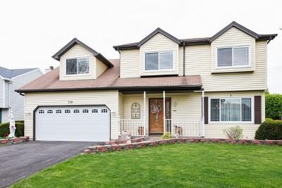 Bolingbrook Single Family Home New: 304 Homewood Drive