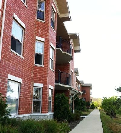 Orland Park Rental New: 7250 West 157th Street #303
