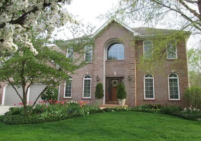 Glen Ellyn Single Family Home For Sale: 885 Sheehan Avenue