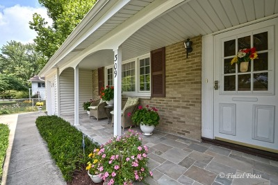 Palatine Single Family Home New: 309 North Rohlwing Road