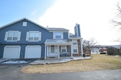 Bolingbrook Condo/Townhouse New: 329 Pinto Drive