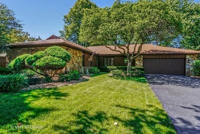 Homer Glen Single Family Home For Sale: 13448 West Hiawatha Drive