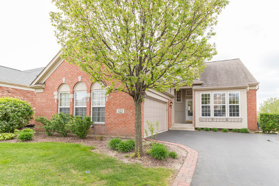 Orland Park Single Family Home New: 9323 Tandragee Drive