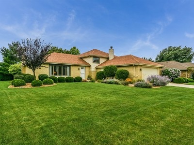 Orland Park Single Family Home New: 15250 Royal Foxhunt Road