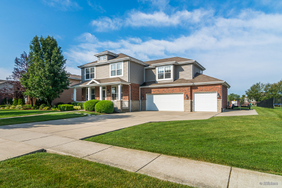 New Lenox Single Family Home For Sale