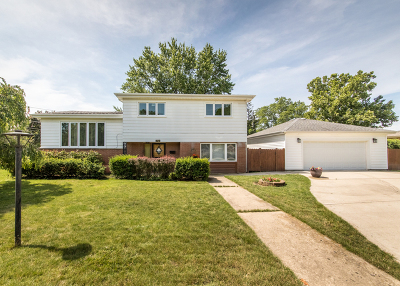 Mount Prospect Single Family Home For Sale: 1701 West Myrtle Drive