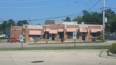 Elgin Commercial For Sale: 260 National Street