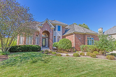 South Elgin Single Family Home For Sale: 612 Waters Edge Drive