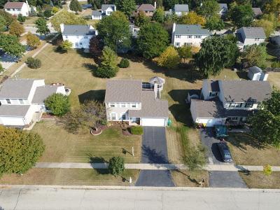Crystal Lake Single Family Home New: 706 Juniper Lane