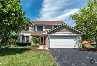 Bolingbrook Single Family Home New: 1 Hickory Oaks Court