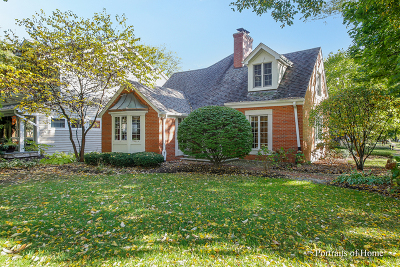 Naperville Single Family Home For Sale: 706 Highland Avenue