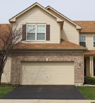 Elgin Condo/Townhouse New: 973 Oak Ridge Boulevard #973