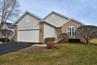 Romeoville Single Family Home For Sale: 629 Pierport Lane