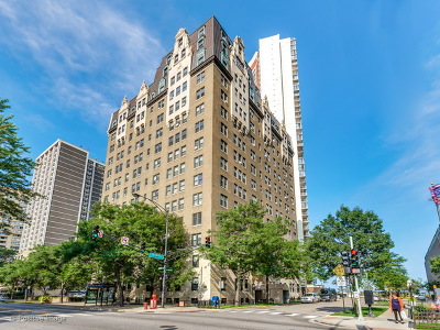 Chicago Condo/Townhouse New: 6101 North Sheridan Road #11A