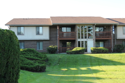 Streamwood Condo/Townhouse Contingent: 800 Brook Drive #5