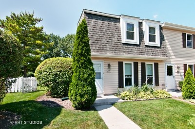 Roselle Condo/Townhouse Contingent: 210 Rodenburg Road