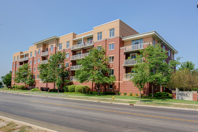 Lombard Condo/Townhouse New: 500 East Saint Charles Road #404
