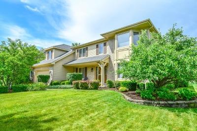Single Family Home New: 3712 Celeste Lane