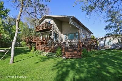 Fox Lake Single Family Home For Sale: 46 North Lake Avenue