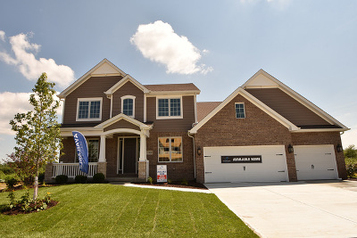 Orland Park Single Family Home Contingent: 13829 Creek Crossing (Lot 33) Drive