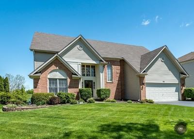 Du Page County Single Family Home New: 755 Sigmund Road