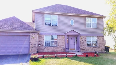 Du Page County Single Family Home New: 1267 Crystal Shore Court