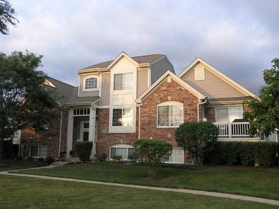 Orland Park Condo/Townhouse New: 14017 John Humphrey Drive #14017