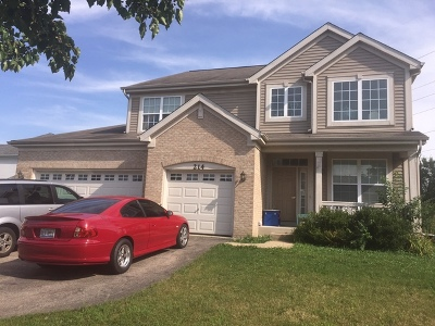 Du Page County Single Family Home New: 214 Red Oak Court