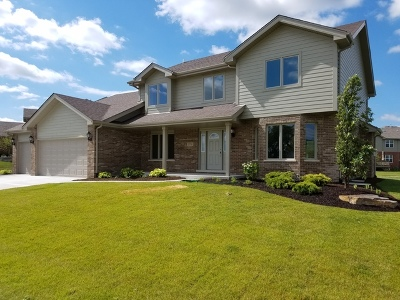 Will County Single Family Home New: 19716 Longmeadow Drive