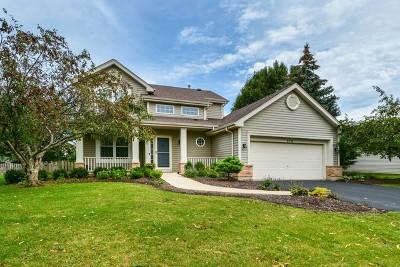Bolingbrook Single Family Home New: 370 Blackfoot Drive