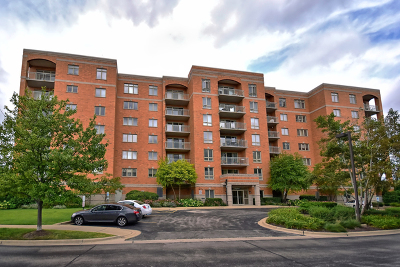 Niles Condo/Townhouse Contingent: 6801 North Milwaukee Avenue #305