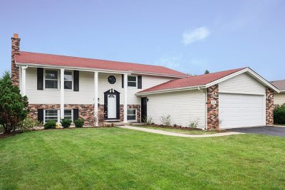Du Page County Single Family Home New: 808 West Sable Drive