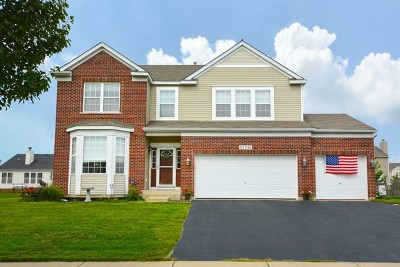 Will County Single Family Home New: 25350 Bann Street