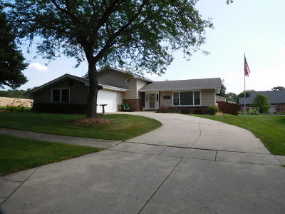 Will County Single Family Home New: 408 North Raven Road