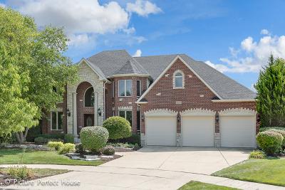 Will County Single Family Home New: 4827 Sebastian Court