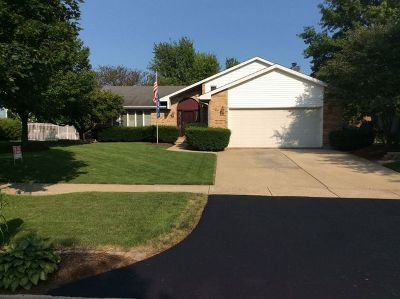 Will County Single Family Home New: 104 Brynn Drive