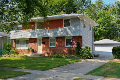 Carpentersville Single Family Home For Sale: 1423 Windsor Circle
