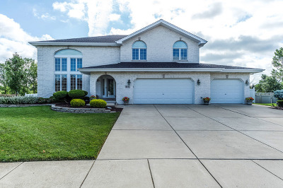 Woodridge Single Family Home For Sale: 9131 South Somerset Lane