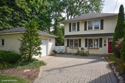 Geneva Single Family Home New: 216 Stevens Street