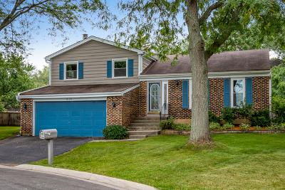 Carol Stream Single Family Home Contingent: 1020 Evergreen Drive