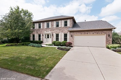 Naperville Single Family Home Contingent: 1312 Hunter Circle
