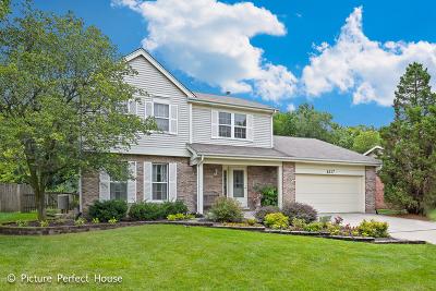 Woodridge Single Family Home For Sale: 8217 Meadowwood Avenue