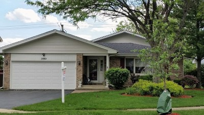 Hanover Park Single Family Home For Sale: 2099 Newport Circle
