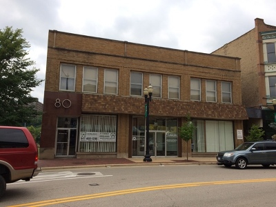 Elgin Commercial For Sale: 76 South Grove Avenue