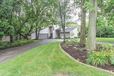 Roselle Single Family Home For Sale: 795 Rosedale Avenue