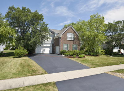 Plainfield Single Family Home For Sale: 24656 Woodstock Drive