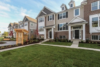 Naperville Condo/Townhouse For Sale: 1423 North Charles Lot # 02.02 Avenue